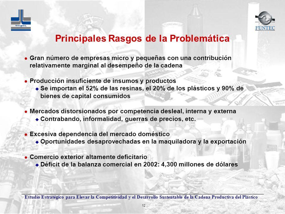 Estudio Estratégico para Elevar la Competitividad y el Desarrollo Sustentable de la Cadena Productiva del Plástico 12 Principales Rasgos de la Problem