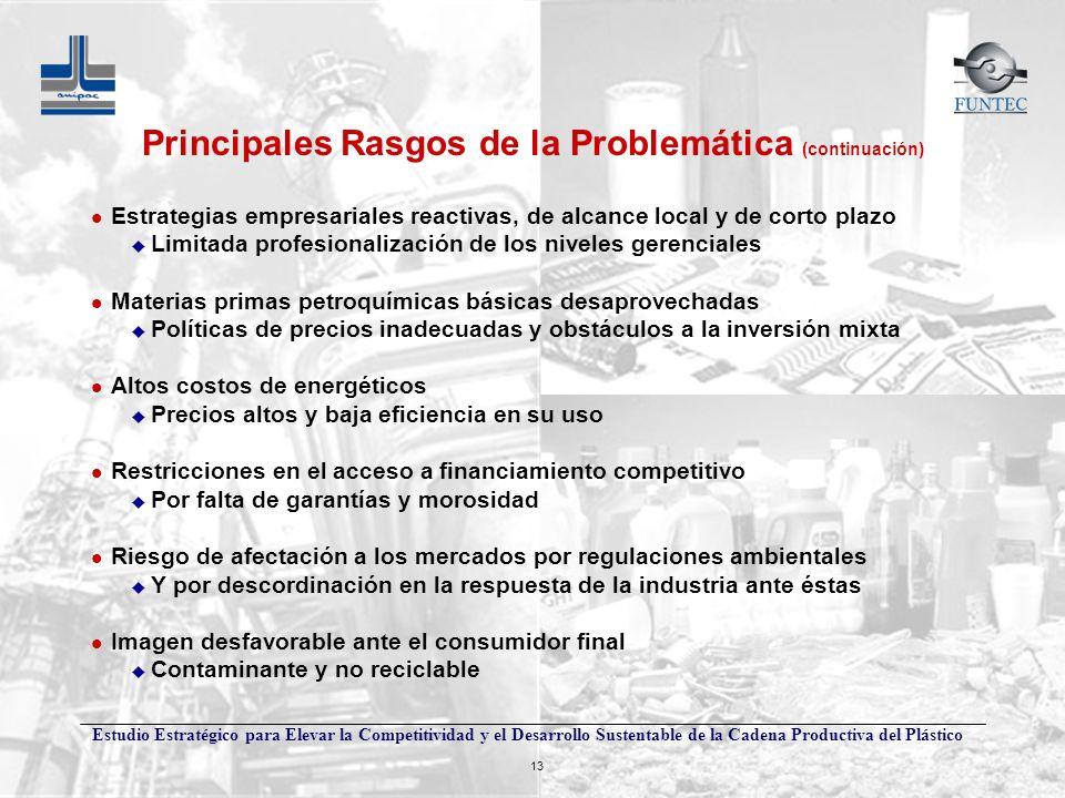Estudio Estratégico para Elevar la Competitividad y el Desarrollo Sustentable de la Cadena Productiva del Plástico 13 Principales Rasgos de la Problem