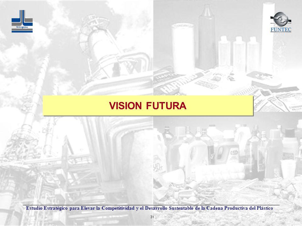 Estudio Estratégico para Elevar la Competitividad y el Desarrollo Sustentable de la Cadena Productiva del Plástico 31 VISION FUTURA