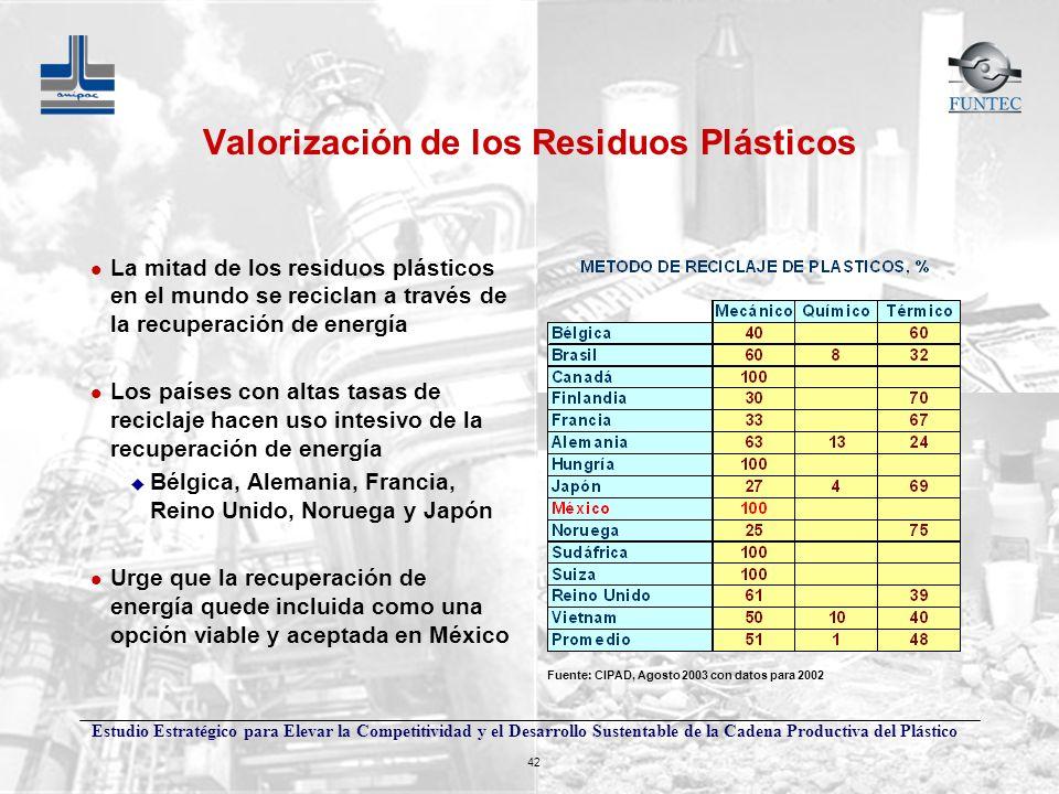 Estudio Estratégico para Elevar la Competitividad y el Desarrollo Sustentable de la Cadena Productiva del Plástico 42 Valorización de los Residuos Plá