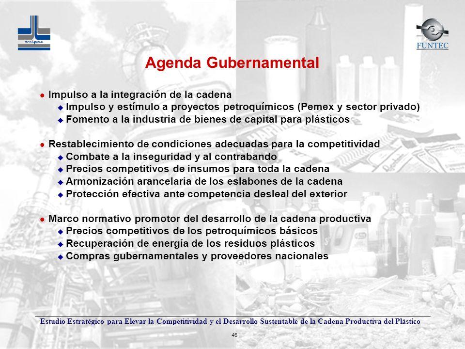 Estudio Estratégico para Elevar la Competitividad y el Desarrollo Sustentable de la Cadena Productiva del Plástico 46 Agenda Gubernamental l Impulso a
