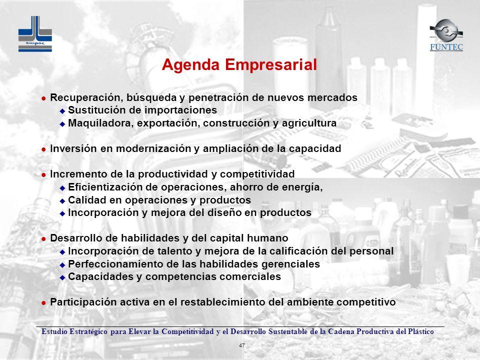 Estudio Estratégico para Elevar la Competitividad y el Desarrollo Sustentable de la Cadena Productiva del Plástico 47 Agenda Empresarial l Recuperació