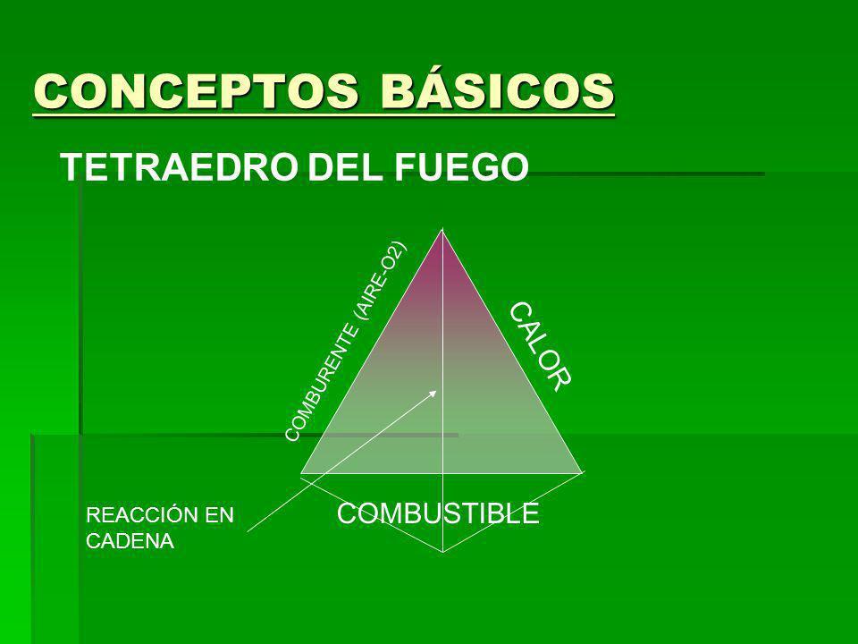CONCEPTOS BÁSICOS CLASES DE FUEGO CLASE A : COMBUSTIBLES SÓLIDOS MADERA. CARBÓN. PAJA. TEJIDOS
