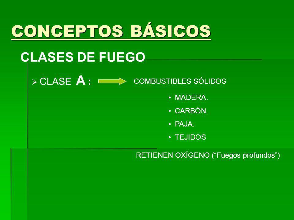CONCEPTOS BÁSICOS CLASES DE FUEGO CLASE A : COMBUSTIBLES SÓLIDOS RETIENEN OXÍGENO (Fuegos profundos) CLASE B : SUSTANCIAS LÍQUIDAS GASOLINA PETRÓLEO ACEITE GRASAS ARDE LA SUPERFICIE EN CONTACTO CON EL AIRE