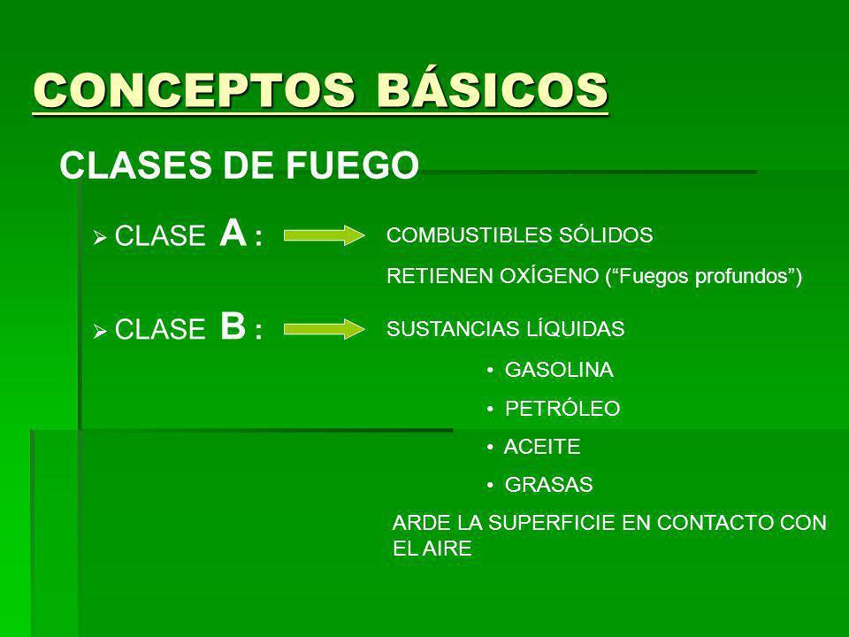 CONCEPTOS BÁSICOS CLASES DE FUEGO CLASE A : COMBUSTIBLES SÓLIDOS RETIENEN OXÍGENO (Fuegos profundos) CLASE B : SUSTANCIAS LÍQUIDAS ARDE LA SUPERFICIE EN CONTACTO CON EL AIRE CLASE C : SUSTANCIAS GASEOSAS BUTANO PROPANO METANO GAS CIUDAD
