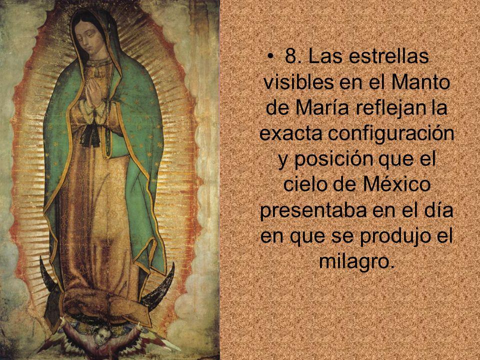8. Las estrellas visibles en el Manto de María reflejan la exacta configuración y posición que el cielo de México presentaba en el día en que se produ