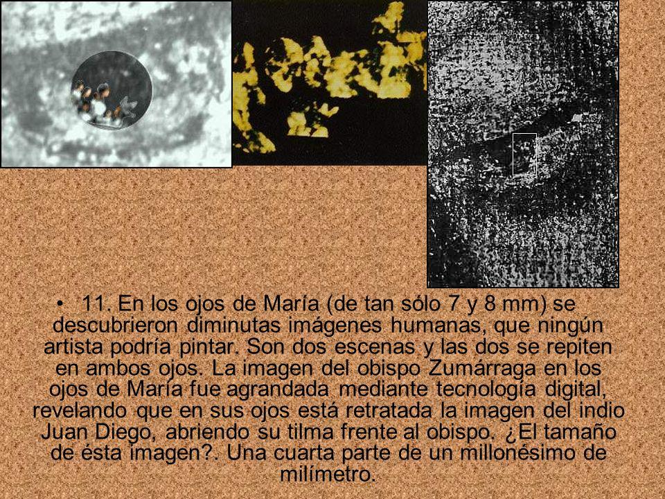 11. En los ojos de María (de tan sólo 7 y 8 mm) se descubrieron diminutas imágenes humanas, que ningún artista podría pintar. Son dos escenas y las do