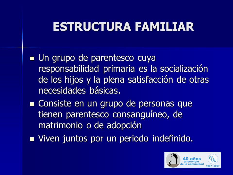 ESTRUCTURA FAMILIAR Un grupo de parentesco cuya responsabilidad primaria es la socialización de los hijos y la plena satisfacción de otras necesidades básicas.