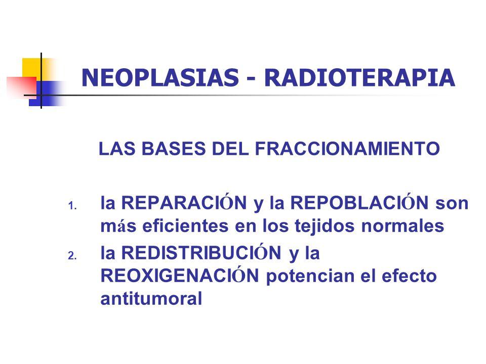 NEOPLASIAS - RADIOTERAPIA LAS BASES DEL FRACCIONAMIENTO 1. la REPARACI Ó N y la REPOBLACI Ó N son m á s eficientes en los tejidos normales 2. la REDIS