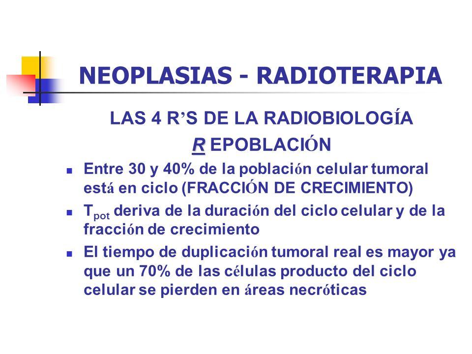 NEOPLASIAS - RADIOTERAPIA LAS 4 R S DE LA RADIOBIOLOG Í A R R EPOBLACI Ó N Entre 30 y 40% de la poblaci ó n celular tumoral est á en ciclo (FRACCI Ó N
