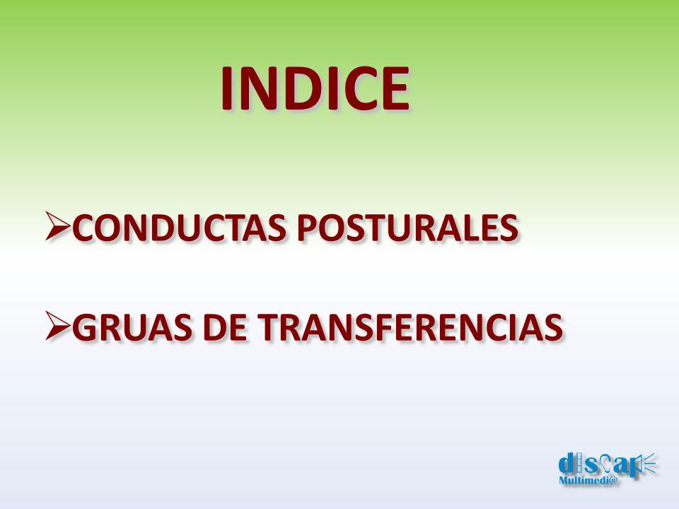 INDICE CONDUCTAS POSTURALES GRUAS DE TRANSFERENCIAS CONDUCTAS POSTURALES GRUAS DE TRANSFERENCIAS