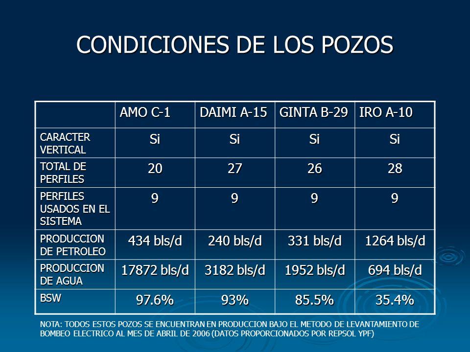 CONDICIONES DE LOS POZOS AMO C-1 DAIMI A-15 GINTA B-29 IRO A-10 CARACTER VERTICAL SiSiSiSi TOTAL DE PERFILES 20272628 PERFILES USADOS EN EL SISTEMA 99