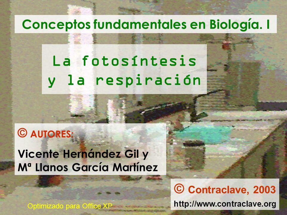 La fotosíntesis y la respiración Conceptos fundamentales en Biología. I © AUTORES: Vicente Hernández Gil y Mª Llanos García Martínez © Contraclave, 20