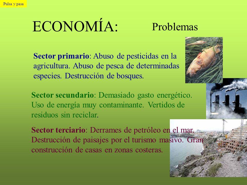 ECONOMÍA: Problemas Sector primario: Abuso de pesticidas en la agricultura. Abuso de pesca de determinadas especies. Destrucción de bosques. Sector se