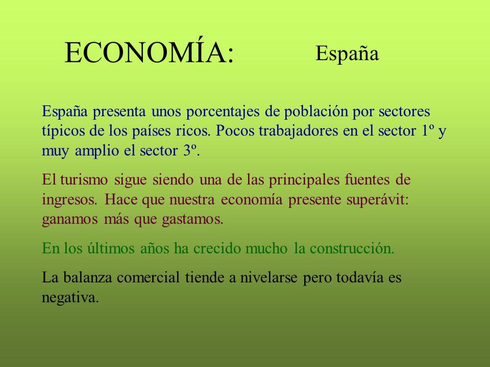 ECONOMÍA: España España presenta unos porcentajes de población por sectores típicos de los países ricos. Pocos trabajadores en el sector 1º y muy ampl