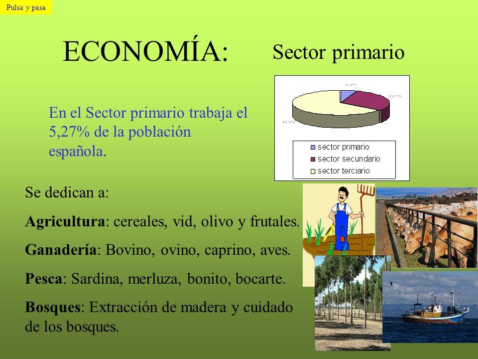 ECONOMÍA: Sector primario En el Sector primario trabaja el 5,27% de la población española. Se dedican a: Agricultura: cereales, vid, olivo y frutales.