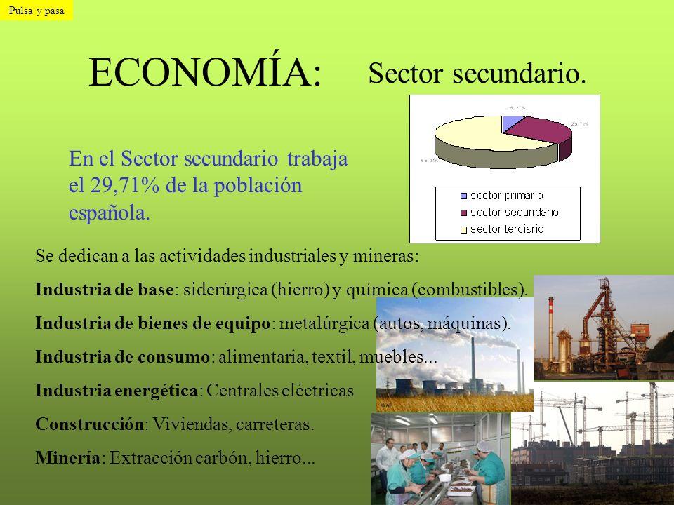 ECONOMÍA: Sector secundario. En el Sector secundario trabaja el 29,71% de la población española. Se dedican a las actividades industriales y mineras: