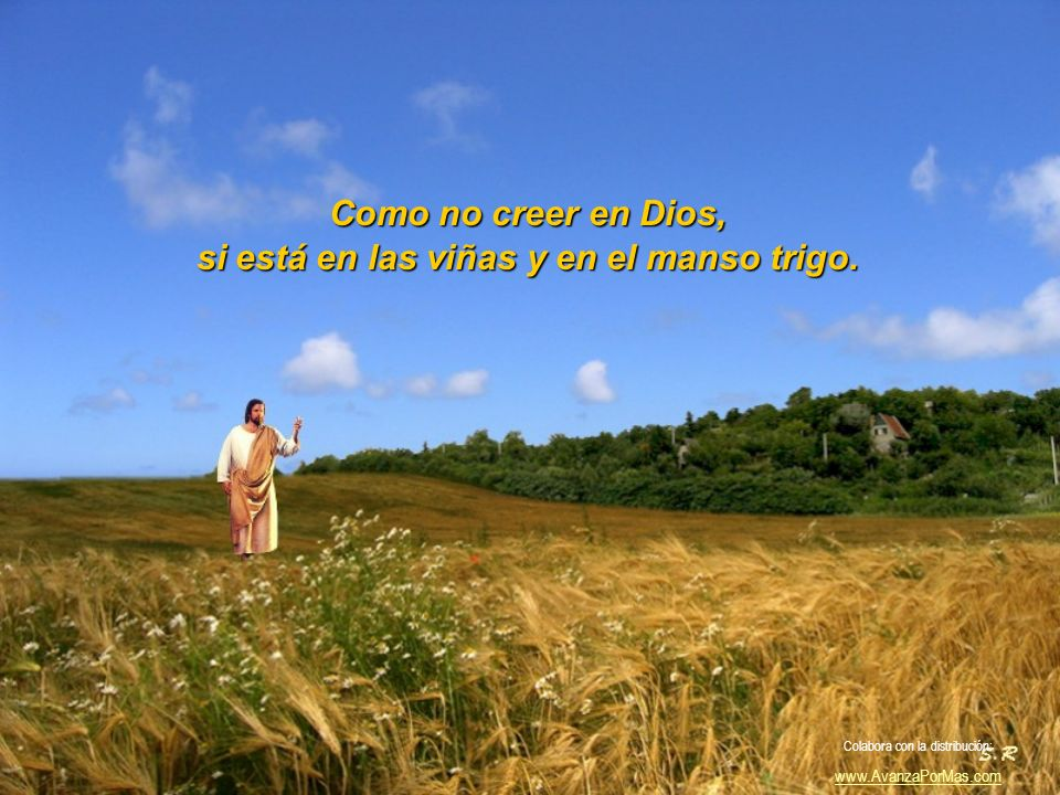 En la risa de un niño por la calle, o en la tierna caricia de una madre, Como no! Colabora con la distribución: www.AvanzaPorMas.com