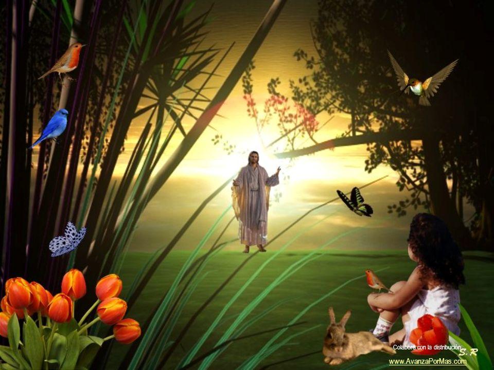 De saber que hay un mañana cada día, por la fe, por la esperanza y el amor. Como no! Colabora con la distribución: www.AvanzaPorMas.com