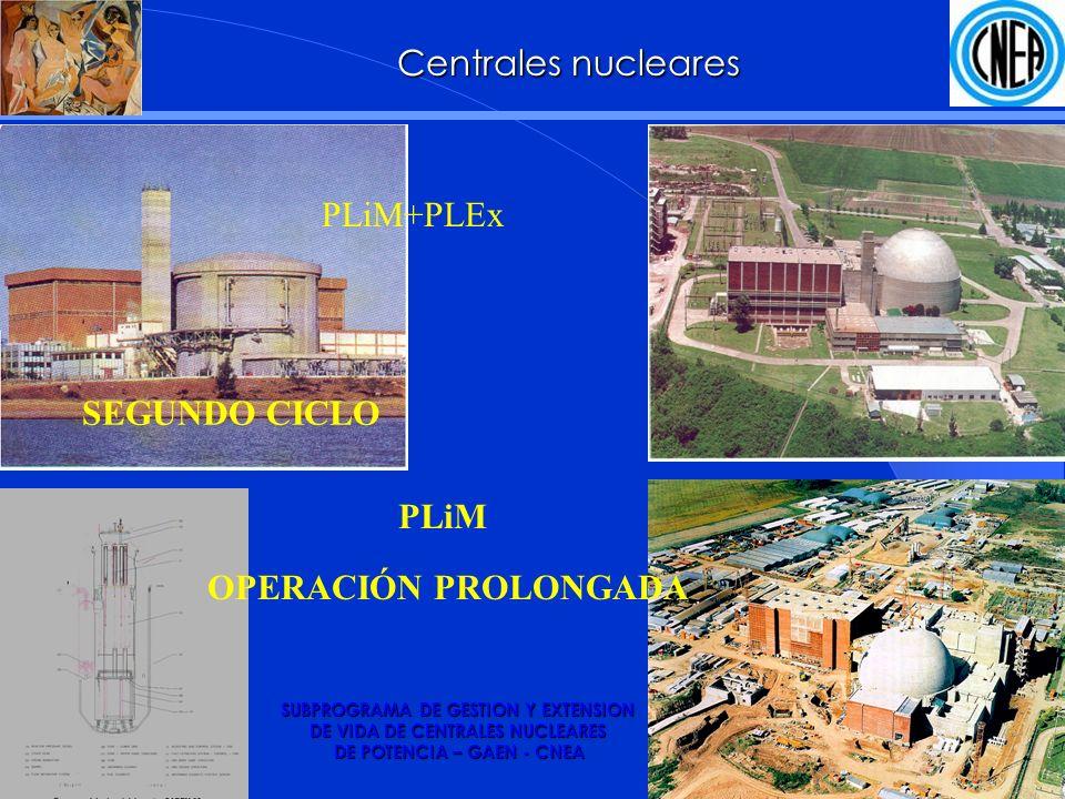 SUBPROGRAMA DE GESTION Y EXTENSION DE VIDA DE CENTRALES NUCLEARES DE POTENCIA – GAEN - CNEA PLiM PLiM+PLEx OPERACIÓN PROLONGADA Centrales nucleares SEGUNDO CICLO