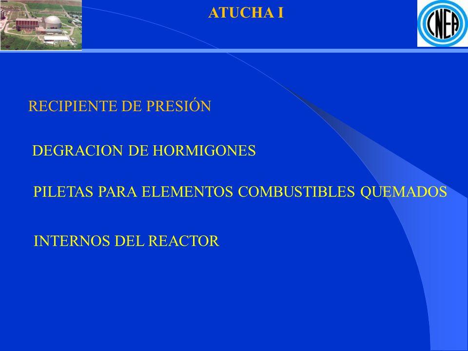 ATUCHA I DEGRACION DE HORMIGONES RECIPIENTE DE PRESIÓN INTERNOS DEL REACTOR PILETAS PARA ELEMENTOS COMBUSTIBLES QUEMADOS