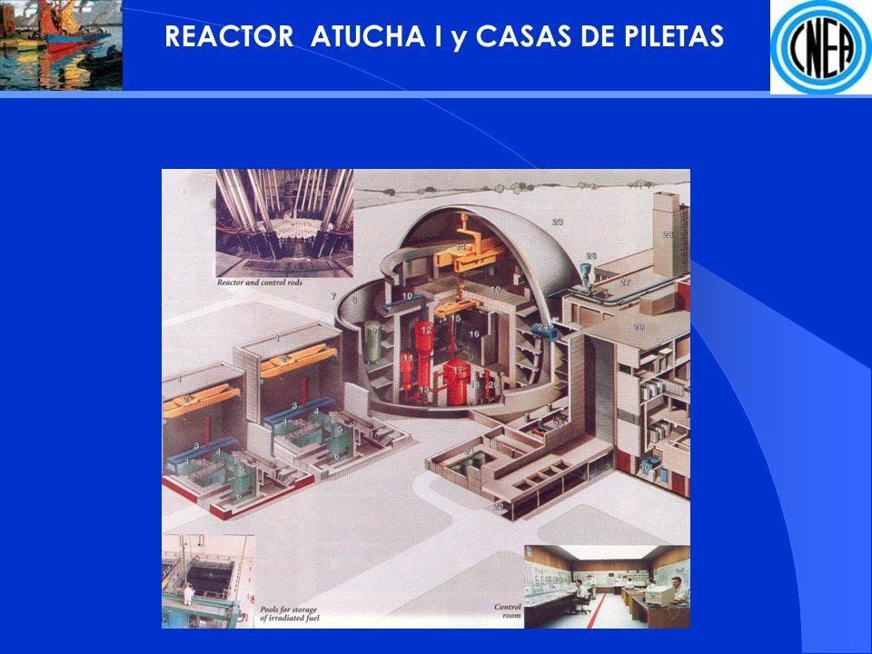 REACTOR ATUCHA I y CASAS DE PILETAS