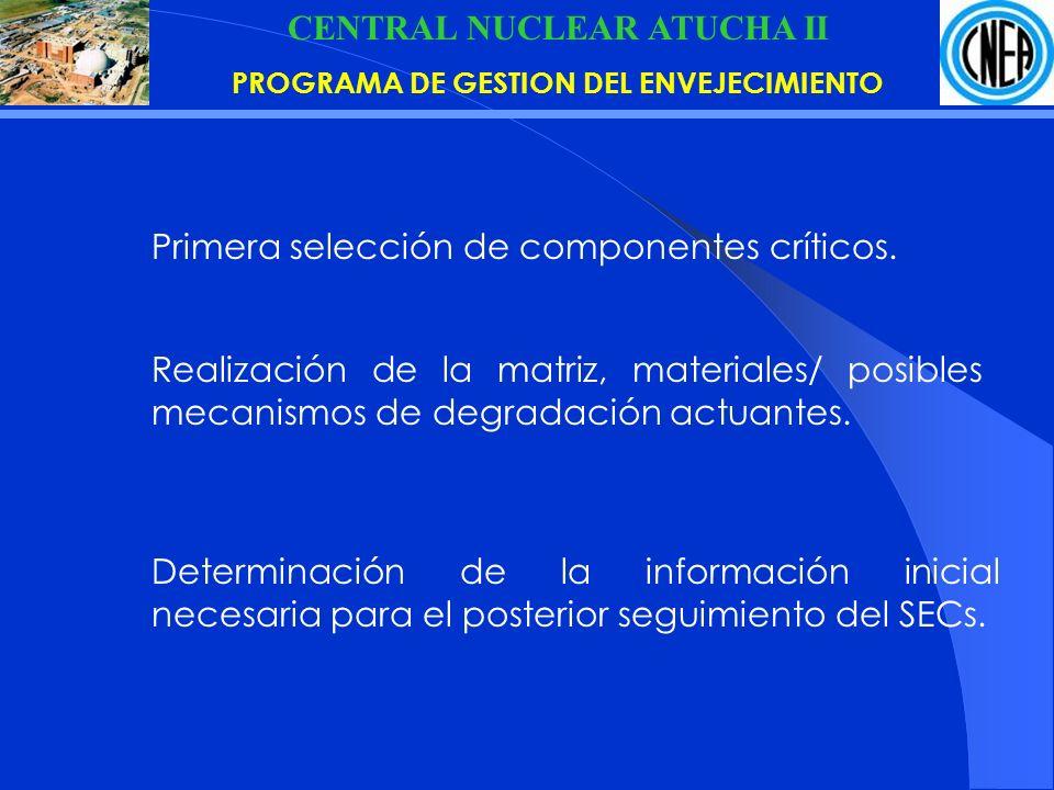 CENTRAL NUCLEAR ATUCHA II PROGRAMA DE GESTION DEL ENVEJECIMIENTO Primera selección de componentes críticos.