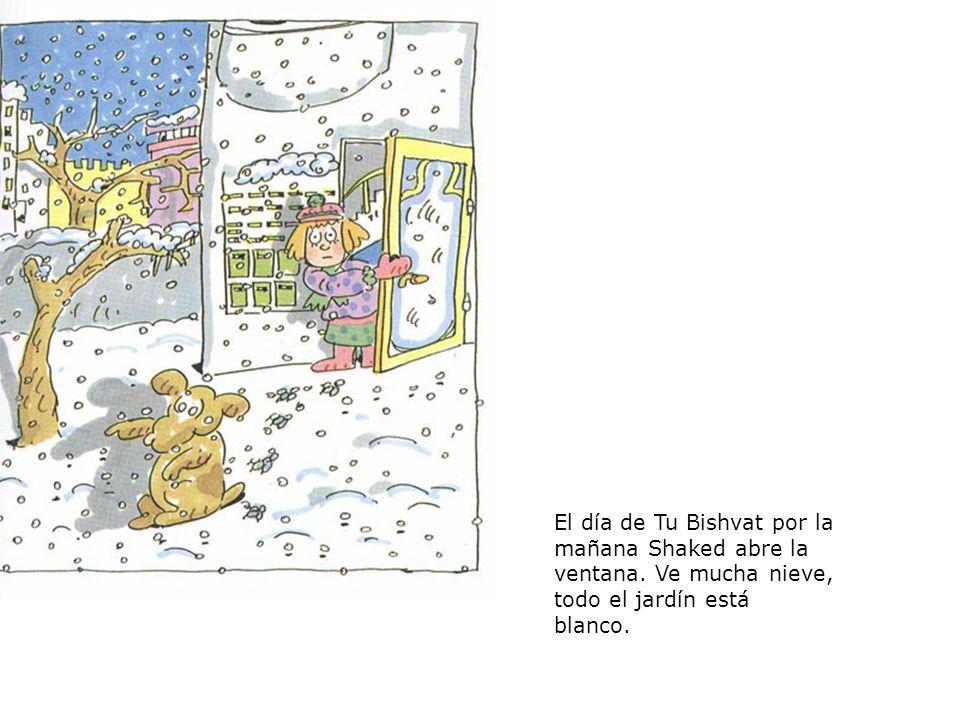 El día de Tu Bishvat por la mañana Shaked abre la ventana. Ve mucha nieve, todo el jardín está blanco.