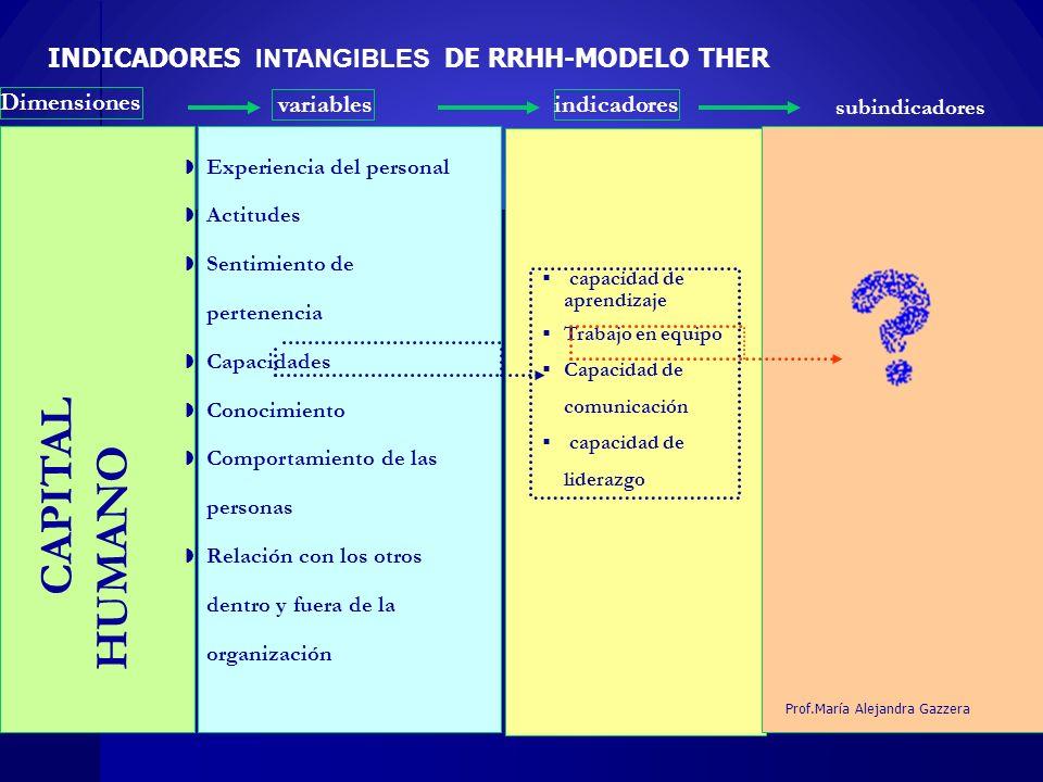 18 Dimensiones variablesindicadores INDICADORES INTANGIBLES DE RRHH-MODELO THER capacidad de aprendizaje Trabajo en equipo Capacidad de comunicación c