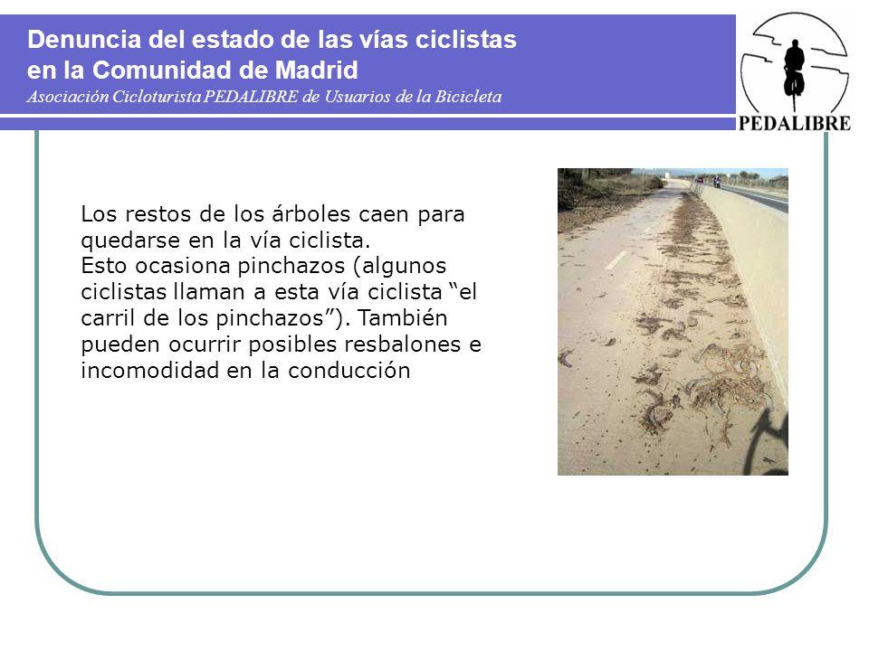 Denuncia del estado de las vías ciclistas en la Comunidad de Madrid Asociación Cicloturista PEDALIBRE de Usuarios de la Bicicleta Los restos de los ár