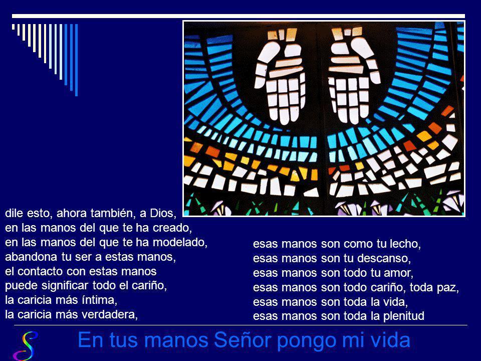 en tus manos pongo todo mi ser, toda la fatiga, todo el cansancio, todo tu ser, todo en las manos de tu Padre, todo en las manos del silencio. En tus