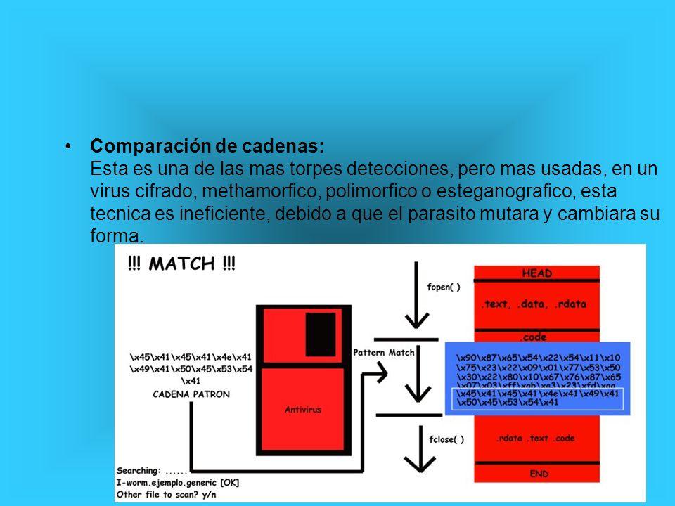 Verificacion de patrones: Esta verificacion es la que comunmente algunos antivirus utilizan para detectar malware, como el anterior metodo, el polimorfismo.