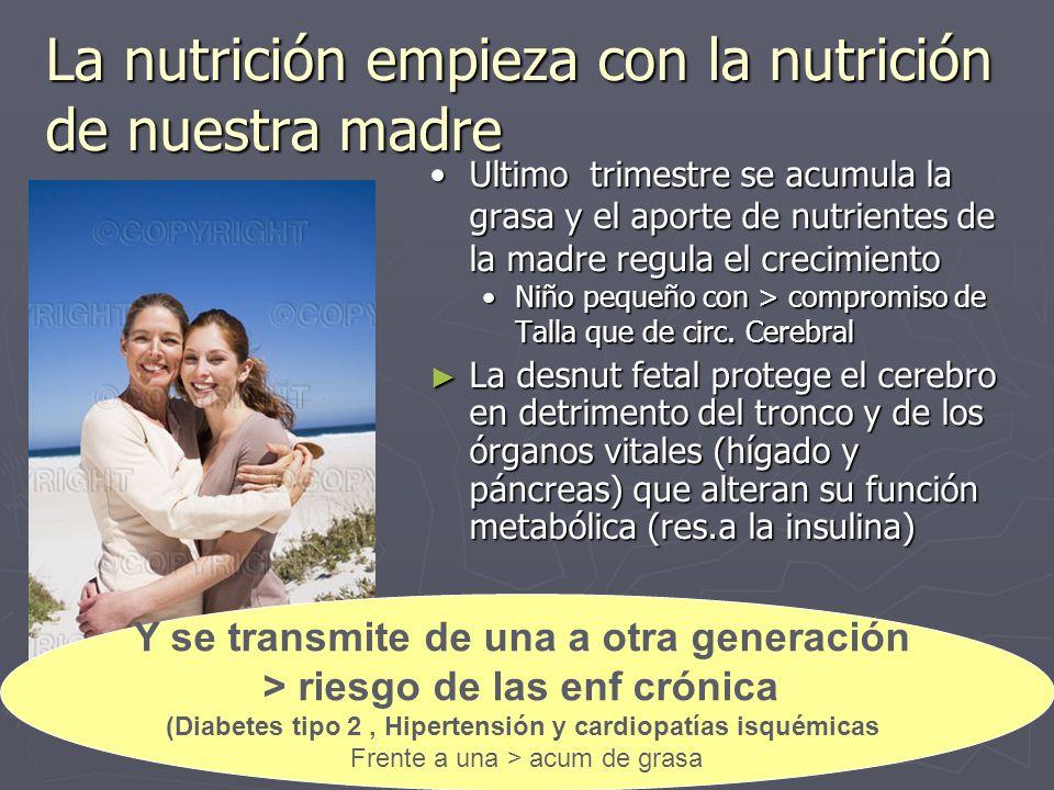 La nutrición empieza con la nutrición de nuestra madre Ultimo trimestre se acumula la grasa y el aporte de nutrientes de la madre regula el crecimiento Niño pequeño con > compromiso de Talla que de circ.