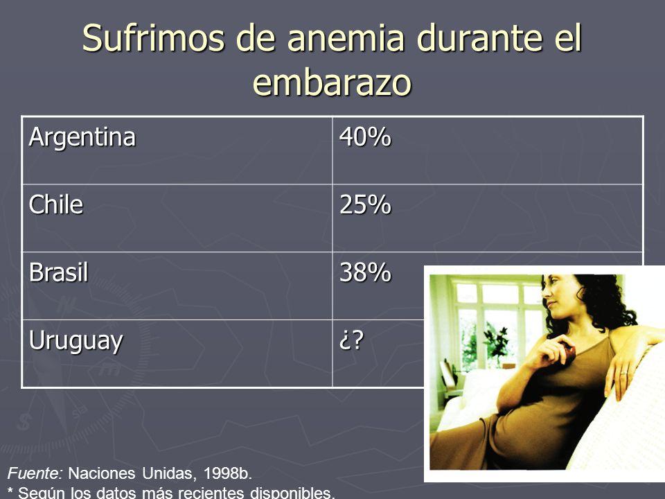 Sufrimos de anemia durante el embarazo Fuente: Naciones Unidas, 1998b.