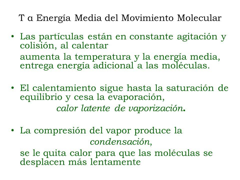 T α Energía Media del Movimiento Molecular Las partículas están en constante agitación y colisión, al calentar aumenta la temperatura y la energía med