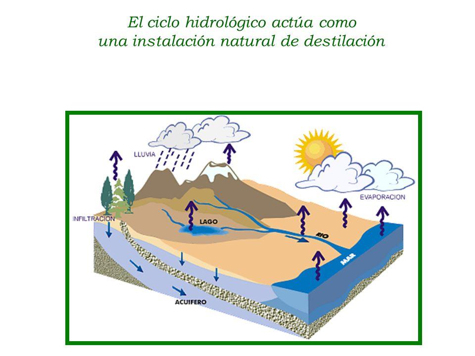 El ciclo hidrológico actúa como una instalación natural de destilación agua salada vapor de agua agua dulce