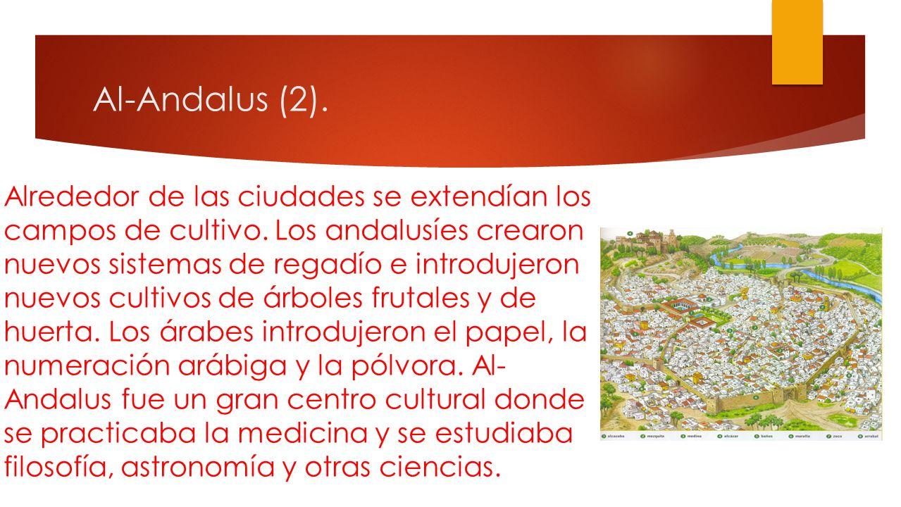 Al-Andalus. La sociedad andalusí era fundamentalmente urbana. Las ciudades estaban rodeadas de murallas, y solían tener una alcazaba, un alcázar y var