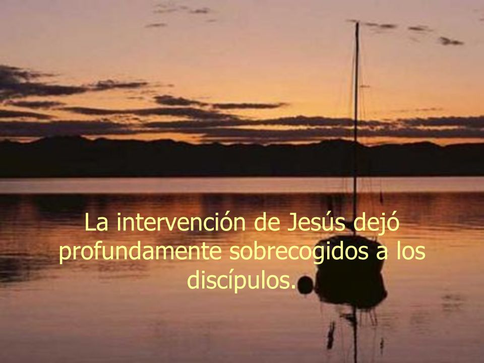 Jesús reprende a sus discípulos por su falta de fe y por haber tenido miedo.