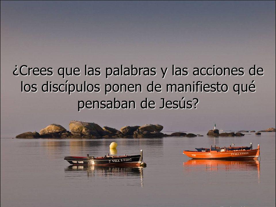 Los discípulos siguen asustados y se preguntan quién es ése que hasta el viento y el mar le obedecen.