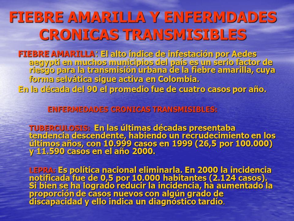 FIEBRE AMARILLA Y ENFERMDADES CRONICAS TRANSMISIBLES FIEBRE AMARILLA : El alto índice de infestación por Aedes aegypti en muchos municipios del país e