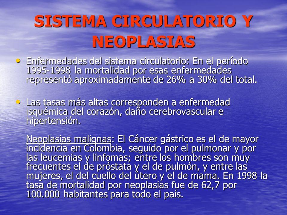SISTEMA CIRCULATORIO Y NEOPLASIAS Enfermedades del sistema circulatorio: En el período 1995-1998 la mortalidad por esas enfermedades representó aproxi