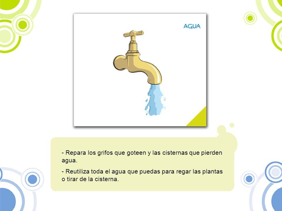 - Repara los grifos que goteen y las cisternas que pierden agua. - Reutiliza toda el agua que puedas para regar las plantas o tirar de la cisterna.