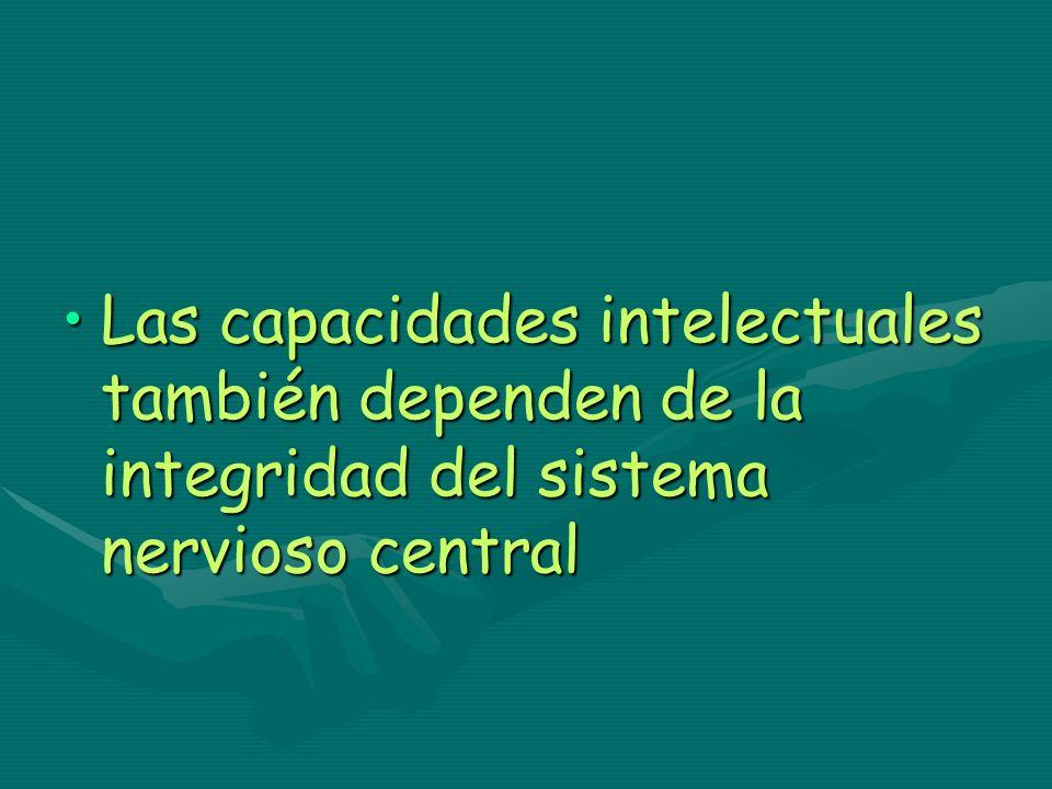 Las capacidades intelectuales también dependen de la integridad del sistema nervioso centralLas capacidades intelectuales también dependen de la integ