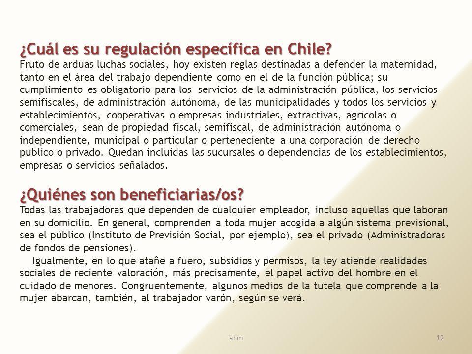 Luego, la Convención dispone que, para sus efectos, se entiende por niño todo ser humano menor de dieciocho años de edad. En todas las medidas concern