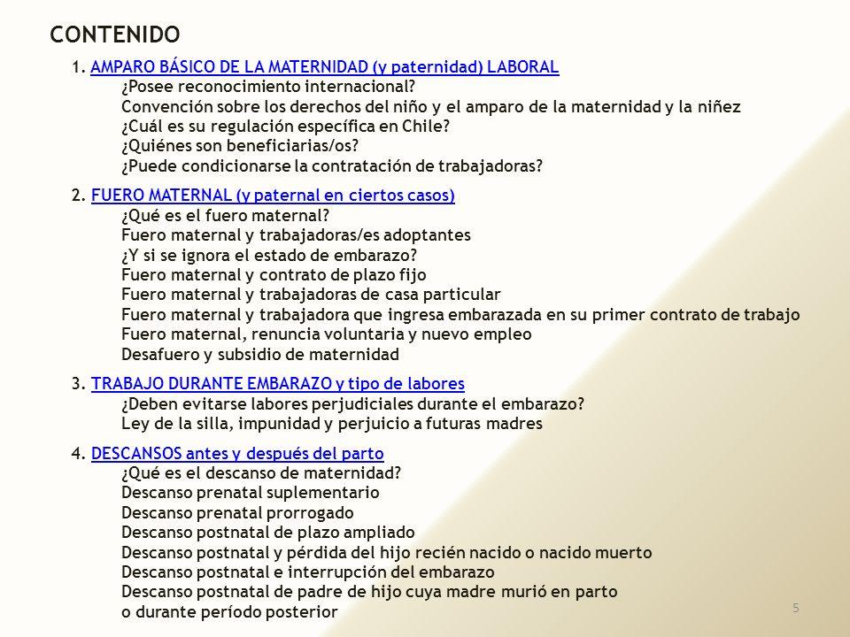 15 La maternidad Pablo Ruiz Picasso
