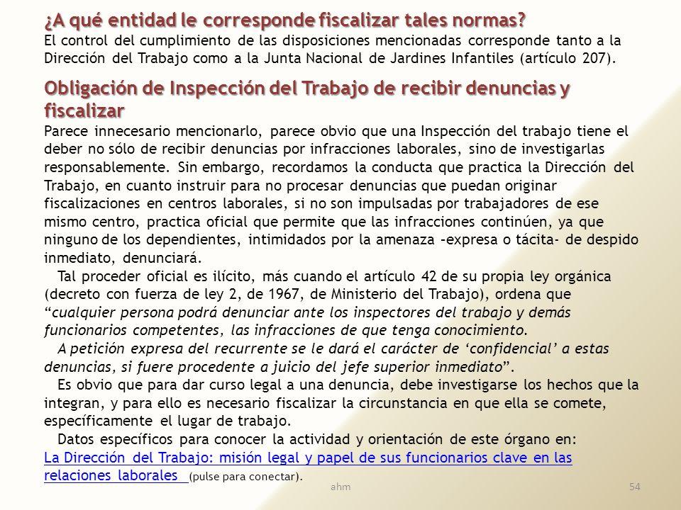 53 10. FISCALIZACIÓN Y DERECHO DE PETICIÓN