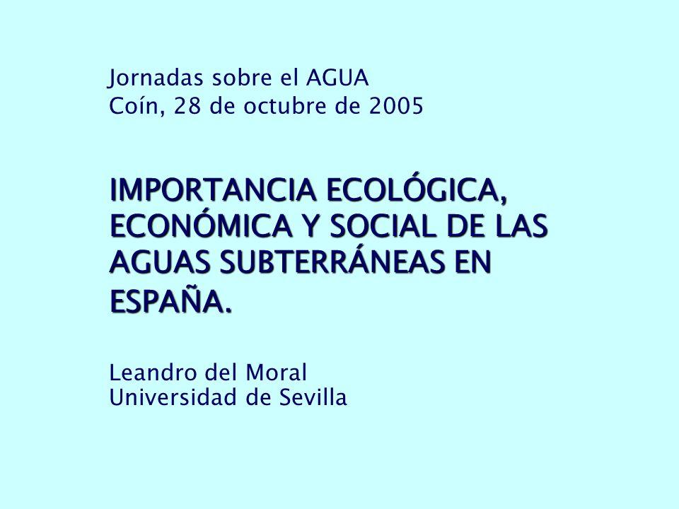 Jornadas sobre el AGUA Coín, 28 de octubre de 2005 IMPORTANCIA ECOLÓGICA, ECONÓMICA Y SOCIAL DE LAS AGUAS SUBTERRÁNEAS EN ESPAÑA.