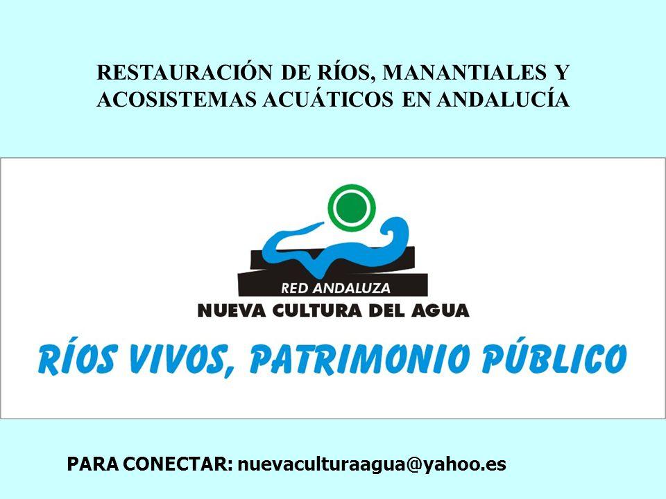 RESTAURACIÓN DE RÍOS, MANANTIALES Y ACOSISTEMAS ACUÁTICOS EN ANDALUCÍA PARA CONECTAR: nuevaculturaagua@yahoo.es