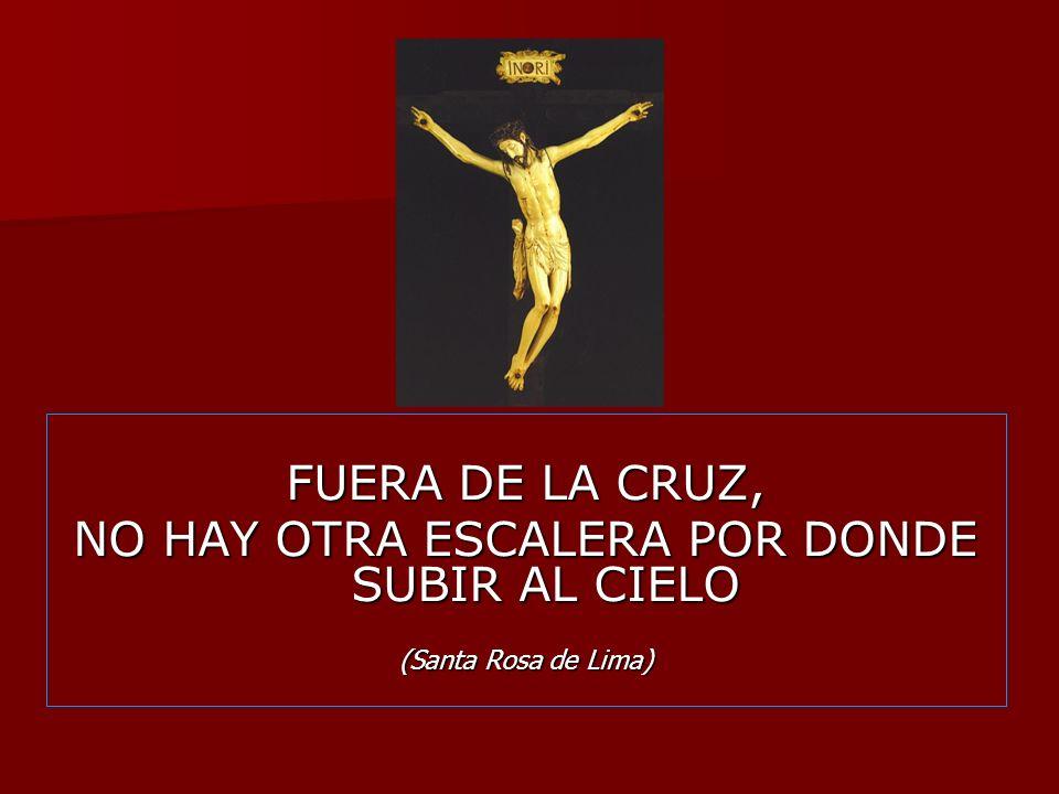 FUERA DE LA CRUZ, NO HAY OTRA ESCALERA POR DONDE SUBIR AL CIELO (Santa Rosa de Lima)