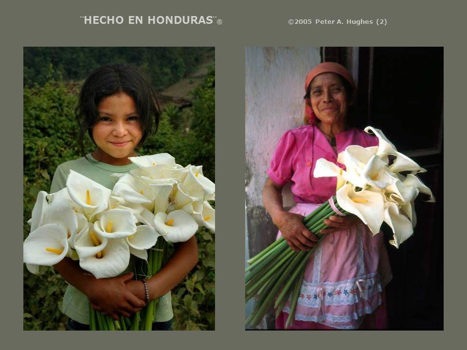 ¨HECHO EN HONDURAS¨ ® ©2005 Peter A. Hughes (2)